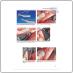 Регенеративные методы в имплантологии (Фуад Кури (Fouad Khoury) и соавт.) 2013 г.