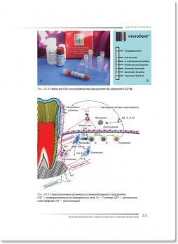 Микробиология, вирусология и иммунология (ред. В. Н. Царёв) 2010 г.