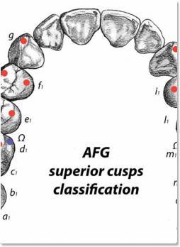 Основы техники AFG моделирование искусственных зубов (Альберто Баттистелли (Battistelli Alberto)) 2018 г.