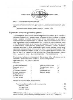 Руководство для среднего медицинского персонала стоматологических клиник (Левисон Х.) 2009 г.