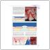 Пластическая хирургия мягких тканей полости рта (Джованни Зуккелли) 2014 г.